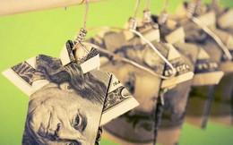 Đối diện với đồng tiền, thế gian có 4 kiểu người, bạn thuộc kiểu nào?