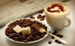 Dự báo thị trường cà phê sắp sôi động trở lại, giá tích cực hơn