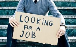 Không cần gì nhiều! Chỉ cần sở hữu kỹ năng này bạn sẽ ngay lập tức thú hút nhà tuyển dụng