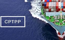 Bài học từ nguyên Bộ trưởng Trương Đình Tuyển với CPTPP: Không nên nhấn mạnh việc chào đón, quan trọng là hướng thực hiện như thế nào!