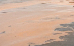 Vệt nước màu đỏ dài hơn 1km xuất hiện trên biển Quảng Bình
