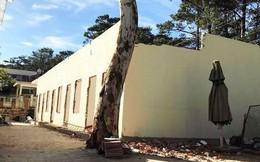 'Phù phép' giấy tờ, qua mặt Sở Xây dựng để cất nhà trong biệt thự cổ