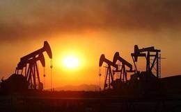 Giá dầu tăng 8% trong tuần, mạnh nhất kể từ tháng 7 năm ngoái
