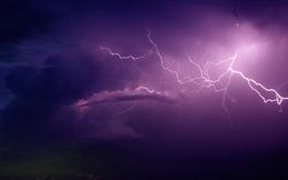 Những cổ phiếu giúp nhà đầu tư tránh bão trong thời gian qua
