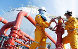 Kế hoạch lãi ròng hợp nhất giảm hơn 33% về 6.429 tỷ đồng, liệu PV GAS có quá bi quan?