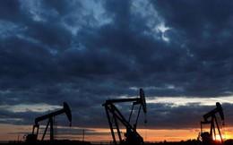 Lực tăng đang mạnh, giá dầu lập đỉnh mới