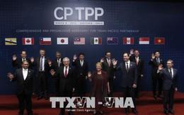 Mexico phê chuẩn Hiệp định CPTPP