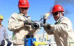 OPEC: Thế giới đã thoát cảnh thừa dầu