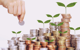 Khoáng sản Á Châu (AMC) chốt quyền nhận cổ tức bằng tiền tỷ lệ 35%
