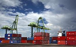 15% doanh nghiệp logistics ước tính doanh thu giảm 50% trước đại dịch Covid-19