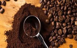 Giá cà phê rớt xuống mức thấp nhất trong 12 tháng