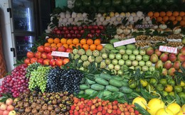 Nhập nhèm nguồn gốc trái cây ngoại