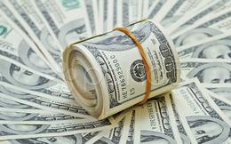 Vimeco (VMC) chốt danh sách cổ đông trả tiếp cổ tức năm 2017 bằng tiền tỷ lệ 100%