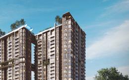 TP.HCM: Xử phạt dự án cao tầng gây sụt lún nhiều căn nhà, đe dọa tính mạng người dân