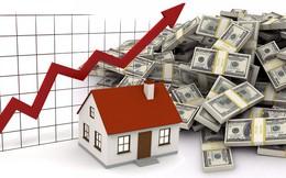 Đầu tư Thành Thành Công mua lại toàn bộ số cổ phiếu SCR bị ế