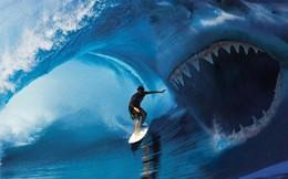 """Nói xuôi cũng được nói ngược cũng xong, nhà đầu tư có nên tin vào lời """"cá mập""""?"""