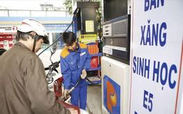 Đề xuất xóa sổ xăng RON95: Để giải cứu dự án ethanol đắp chiếu?