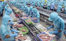 Sản lượng thủy sản nuôi trồng và khai thác đều tăng mạnh
