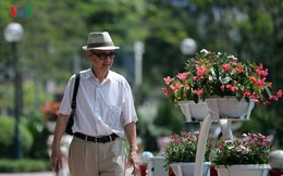 Ảnh: Hà Nội có tuyến phố đi bộ thứ 2 vào ngày 11/5