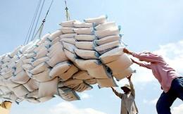 Philippines mời thầu quốc tế 250.000 tấn gạo