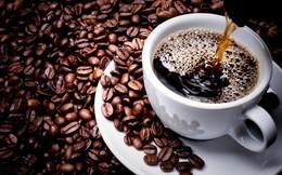 Điều gì sẽ xảy đến nếu trà và cà phê là thứ duy nhất bạn uống trong ngày? Đây là những lầm tưởng và thực tế
