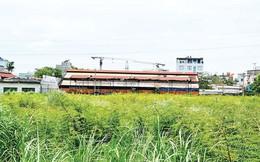 Đoạn đường hơn 1km, 4 khu đất công bỏ hoang