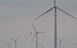 Điện than phải nhập khẩu và quá ô nhiễm, thủy điện lớn đã khai thác hết, vì đâu điện gió Việt Nam chưa thể cất cánh?