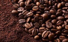 Xuất khẩu cà phê Việt Nam chiếm gần 50% thị phần nhập khẩu vào Nga