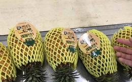 Dứa nhập khẩu 300.000 một trái, dứa nội 3.000 đồng một kg