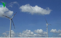 Điện gió Việt Nam chưa hấp dẫn nhà đầu tư