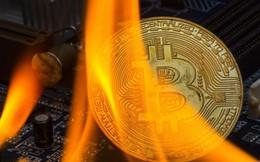 Đằng sau lời cảnh báo bitcoin sẽ khiến hệ thống Internet tê liệt của BIS