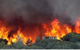 Hàng nghìn người phải sơ tán do cháy rừng ở California, Mỹ