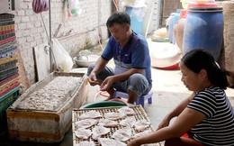 Đặc sản làng nghề du lịch Cửa Lò