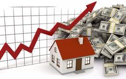 Phú Tài (PTB) dự kiến phát hành 16 triệu cổ phiếu trả cổ tức tỷ lệ 50%