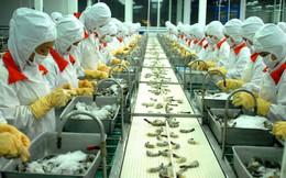 Nông nghiệp, thủy sản khởi sắc nhờ lúa gạo và cá tra