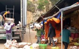 Nông sản Đà Lạt bị nông sản Trung Quốc lấn ép ngay trên sân nhà