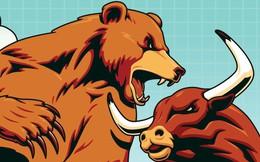 Thị trường hàng hóa ngày 12/7: Dầu giảm mạnh nhất 2 năm, đậu tương rẻ nhất một thập kỷ