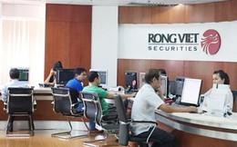 Thị trường không thuận, lợi nhuận Chứng khoán Rồng Việt (VDSC) giảm sâu 86% trong quý 2