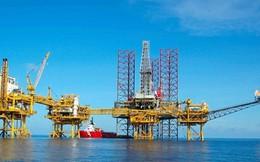 6 tháng lỗ tiếp 30 tỷ đồng, PV Shipyard đã âm vốn chủ sở hữu hơn trăm tỷ đồng