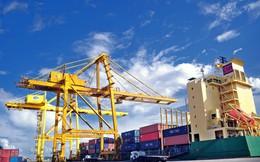 Hàng container thông qua cảng biển tăng trưởng mạnh