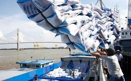Giá gạo Việt Nam vượt trội Thái Lan, Ấn Độ nhờ ưu thế chất lượng