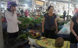 Nghệ An, Hà Tĩnh: Rau xanh khan hiếm, tăng giá gấp đôi sau bão