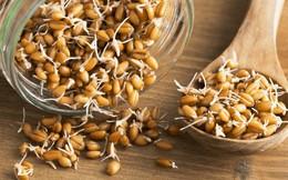 """Ngũ cốc nảy mầm: Loại hạt """"thần kỳ"""" với mức giá rẻ, biết chế biến sẽ có tác dụng cải thiện tiêu hóa, ngăn bệnh tim mạch và chống lão hóa"""