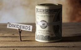 Coteccons trả cổ tức 50% bằng tiền mặt ngay trong tháng 8