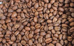 Giá cà phê thế giới đảo chiều tăng trong sự thận trọng