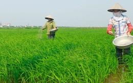 Hóa chất Lâm Thao (LAS): Sản lượng tiêu thụ giảm, LNST quý 2 giảm 18% so với cùng kỳ