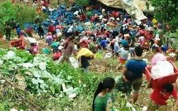 Chính quyền lên tiếng về thông tin người dân Quảng Bình hôi của sau khi xe chở hàng gặp nạn