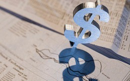 Petrosetco (PET) vừa chi gần 15 tỷ đồng mua cổ phiếu quỹ