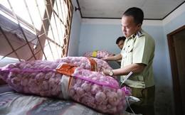 Kỳ lạ, nông sản Trung Quốc từ TP HCM nhập ngược lên Đà Lạt