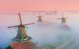 Làng cối xay gió ở Hà Lan chìm trong sương mù huyền ảo như cổ tích